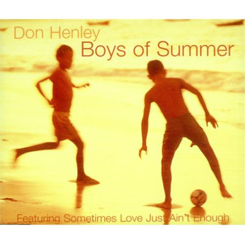 Don-Henley-The-Boys-Of-Summe-124280