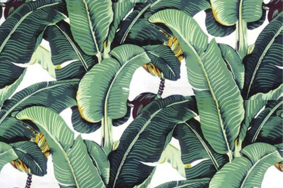 palm-leaf-1