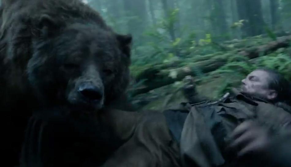leo-bear mauling