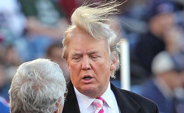 trump toupee in the wind