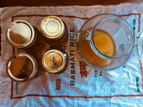 What I Learned From My First Four Months Brewing Kombucha